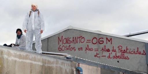 Manifestants anti-OGM sur le toit d'une implantation Monsanto à Trèbes, dans le sud-ouest de la France, le 15 avril 2013. (ERIC CABANIS / AFP)