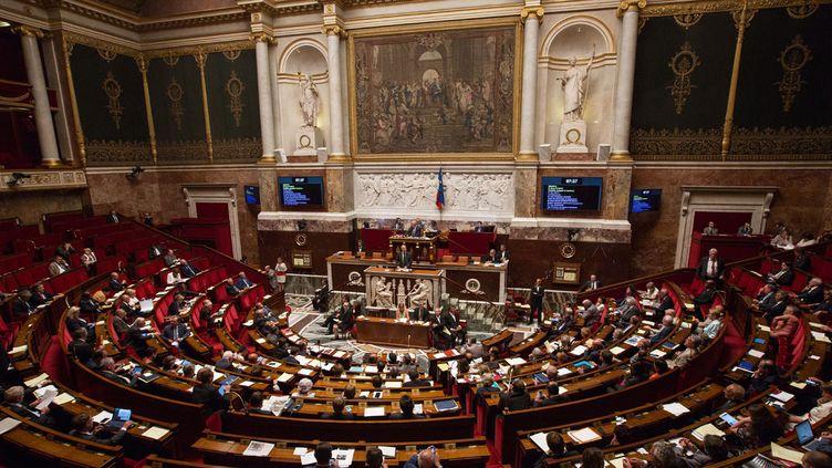 (Le projet de Loi Travail définitivement adopté par le Parlement  © AFP)