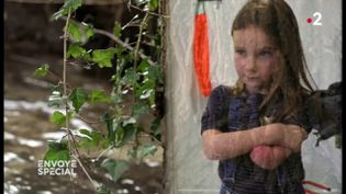 """""""Bébés sans bras"""" : la piste de l'eau (ENVOYÉ SPÉCIAL  / FRANCE 2)"""