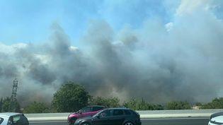 Un incendie s'est déclaré à proximité de l'autoroute A9, le 1er août 2020,entre Milhaud et Nîmes (Gard). (JOANE MERIOT / FRANCE TELEVISIONS)