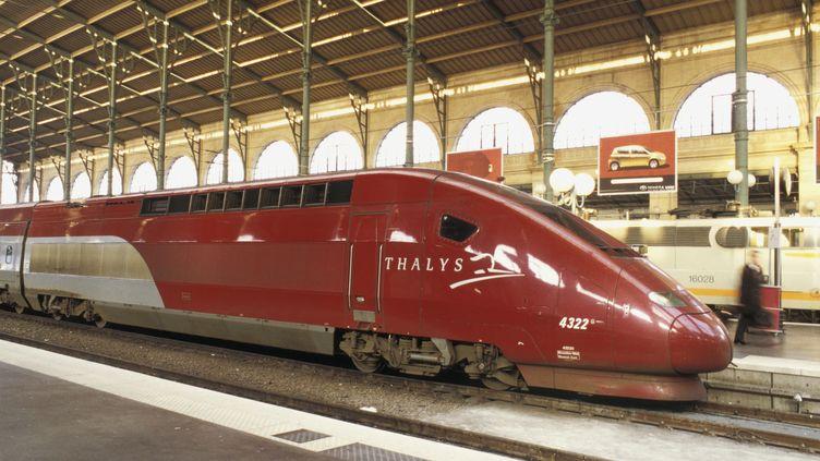 Une rame du train à grande vitesse Thalys stationnée gare du Nord, à Paris. (FRANÇOIS RENAULT / PHOTONONSTOP / AFP)
