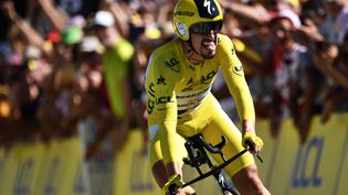 Julian Alaphilippe franchit la ligne du contre-la-montre de la 13e étape du Tour de France, à Pau (Pyrénées-Atlantiques), le 19 juillet 2019. (JEFF PACHOUD / AFP)