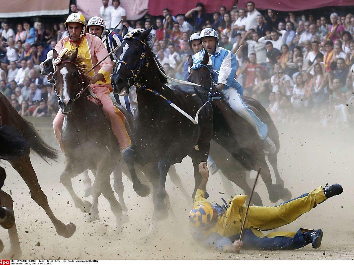 VIDEO. Italie : à Sienne, le célèbre Palio se termine sans bobos pour les  chevaux