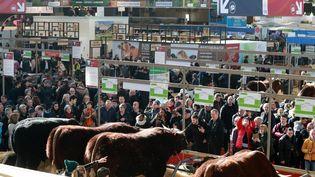 Une vue générale du 57e Salon de l'Agriculture à Paris le 22 février 2020. (LUDOVIC MARIN / AFP)