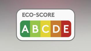 Un monde plus bio et moins polluant, c'est le but de la convention citoyenne sur le climat. Ses 150 membres ont rendu leurs copies et proposent notamment un nouvel instrument, Eco-score, qui évaluera l'impact de chaque produit sur l'environnement. (FRANCE 2)