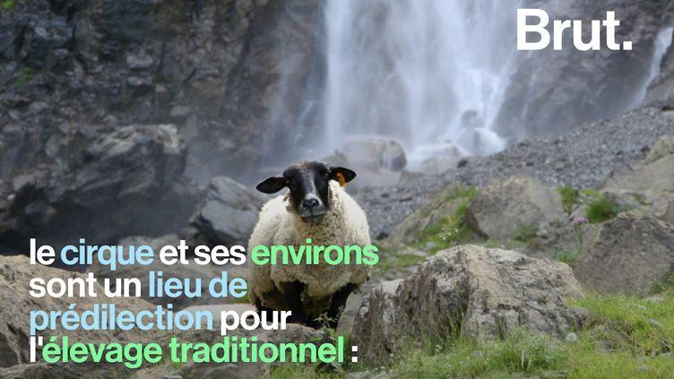 VIDEO. Trois paysages incroyables à découvrir en France (BRUT)