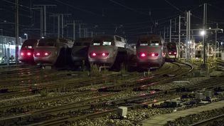 Trains en gare de Châtillon (Hauts-de-Seine). (GEOFFROY VAN DER HASSELT / AFP)
