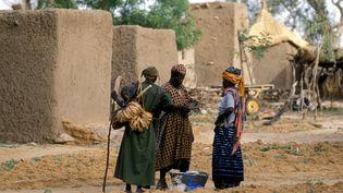 Dans un village dogon, au Mali, le 2 mai 2019. (PHILIPPE ROY / AFP)
