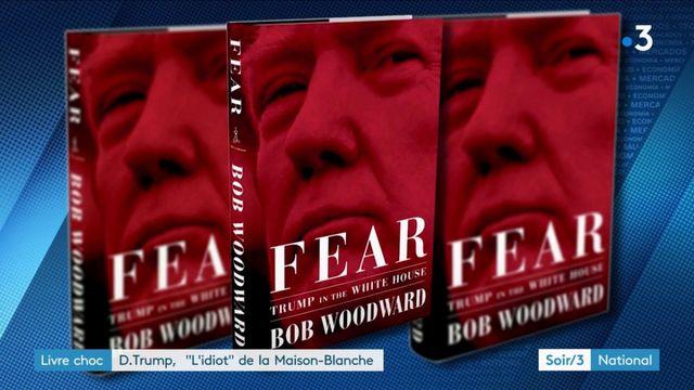 """Etats-Unis : Trump, un """"idiot"""" à la Maison-Blanche ?"""