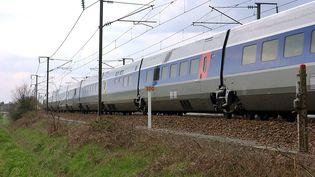 Les passagers d'un TGV Nantes-Paris ont été bloqués par la chute d'un arbre en raison de la tempête Dennis dimanche 16 février (photo d'illustration). (FRANK PERRY / AFP)