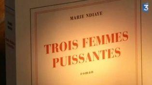 """""""Trois femmes puissantes"""" de Marie Ndiaye-Un Livre un jour Sem N°43  (Culturebox)"""