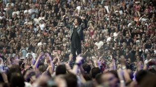 Nicolas Sirkis, chanteur du groupe Indochine lors d'un concert au Stade de France en 2014. (STEPHANE DE SAKUTIN / AFP)
