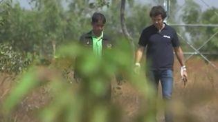 Un Français est en passe de devenir une personnalité clef dans la lutte pour l'environnement. Il s'est donné pour objectif de redonner vie aux forêts. Il a déjà planté plus de sept millions d'arbres sur la planète. (France 3)