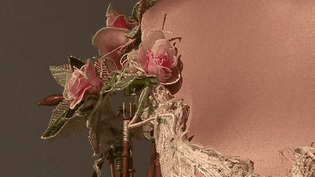 Détail d'une des robes signées Sylvie Facon  (France 3 Culturebox capture d'écran)