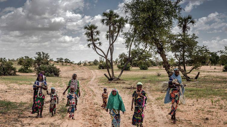 Dans le Sahel... (LUIS TATO/FAO/AFP)