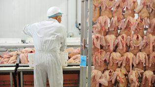 Une usine d'abattage de canards à Lauzach, près de Vannes dans le Morbihan. (MAXPPP)