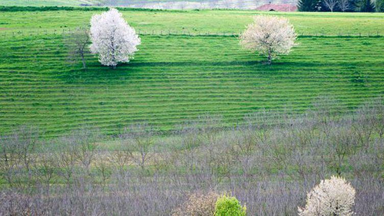Aurélie Filippetti souhaite élargir le droit du patrimoine à la protection des paysages  (Odilon Dimier / AltoPress / PhotoAlto)