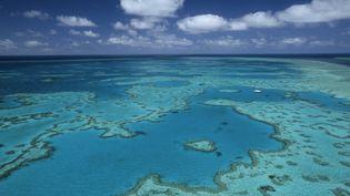 Vue aérienne de laGrande barrière de corail australienne. (THIERRY GRUN / AFP)