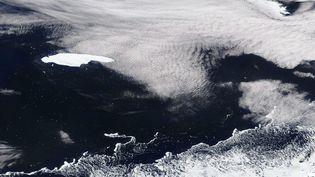 Image satellite de la Nasa montrant l'iceberg A68 dérivant dans l'océan Atlantique vers la Géorgie du Sud, le 4 novembre 2020. (NASA WORLDVIEW / HANDOUT / MAXPPP)