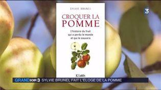 La couverture du livre de Sylvie Brunel (FRANCE 3)