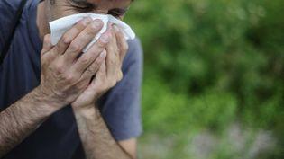 Le pollen de l'ambroisie provoque des allergies. (JS EVRARD / SIPA)