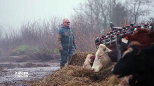 Cet éleveur a-t-il subi des représailles de sa coopérative parce qu'il s'est converti à l'agroécologie ? (PIECES A CONVICTION/FRANCE 3)