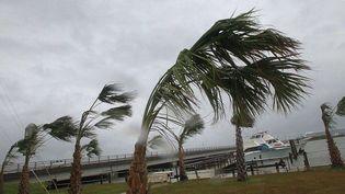 Avec l'arrivée de l'ouragan Sandy le 30 octobre 2012,les eaux pourraient monter de plus de 3 mètres, selon leCentre américain de surveillance des ouragans, basé à Miami (Floride, Etats-Unis). (CHUCK BECKLEY / AP / SIPA)