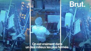 VIDEO. Des caméras pour limiter la souffrance animale dans les abattoirs (BRUT)