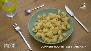 Comment nourrir les Français ? (ENVOYÉ SPÉCIAL  / FRANCE 2)