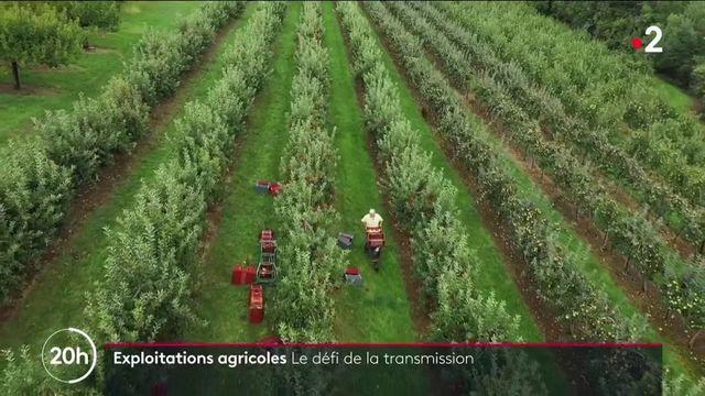 Exploitations agricoles : le défi de la transmission