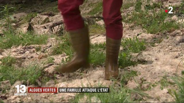 Algues vertes : la famille d'un joggeur décédé attaque l'État
