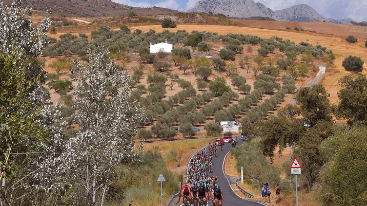 La 14e étape de la Vuelta, longue de 175 km, relie Ecija à Sierra de La Pandera. (DE WAELE TIM / TDWSPORT SARL)