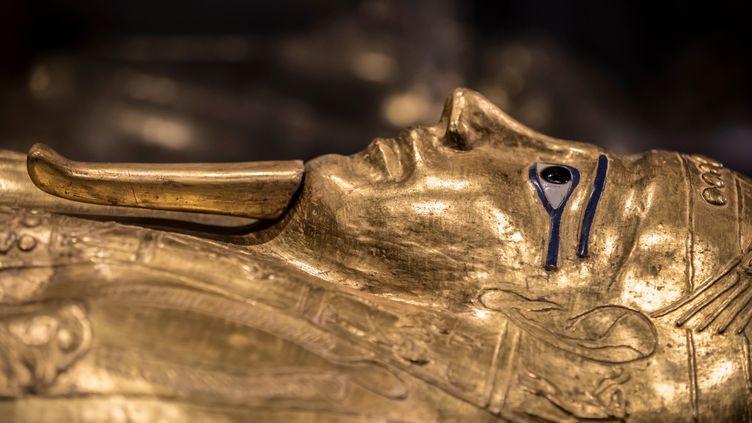 Le sarcophage deNedjemankh présenté au Caire. (KHALED DESOUKI / AFP)