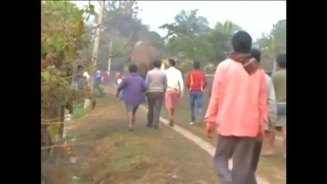 Mardi 10 février, un éléphant s'est introduit dans le village de Siliguri, effrayant les habitants et détruisant une centaine de maisons sur son passage.