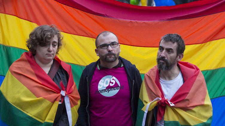 Manifestation contre l'homophobie à Paris le 12 juin 2016. (GEOFFROY VAN DER HASSELT / AFP)