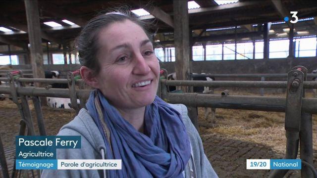 """Agriculture : témoignage d'une exploitante face à l'""""agribashing"""""""