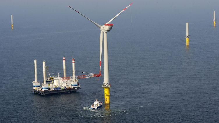 Parc éolien offshore au nord de l'Allemagne, en juillet 2009. (DAVID HECKER / DDP)