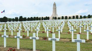 Le cimetière de Fleury-devant-Douaumont (Meuse), près de Verdun, en juillet 2013. (TIM GRAHAM / ROBERT HARDING HERITAGE / AFP)