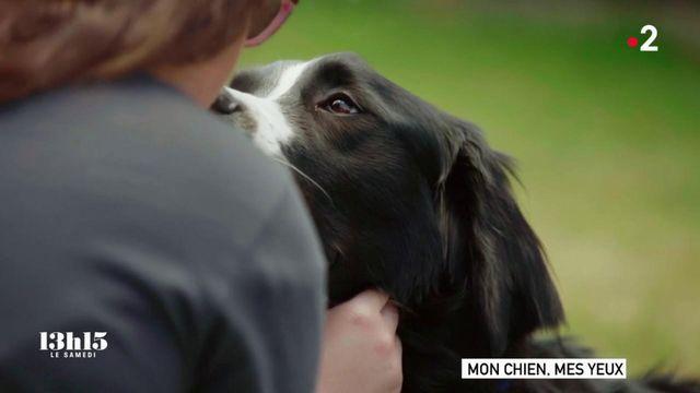 VIDEO. Comment le chien guide Nitro a métamorphosé la vie de Romane, adolescente malvoyante de naissance