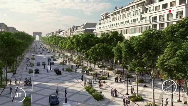 Les commerçants veulent verdir les Champs-Elysées pu accoster