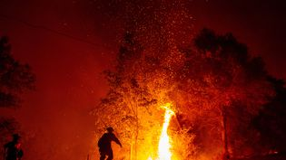 Des pompiers se battent contre un incendie, à Redding (Californie), le 27 juillet 2018. (JOSH EDELSON / AFP)