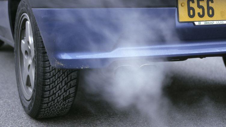 """Le ministère va lancer une étude pour déterminer les """"véhicules vertueux en termes d'émissions"""", a annoncé la ministre de l'Ecologie, mercredi 6 février 2013. (LAURENT CONCHON / AFP)"""
