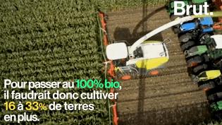 Comment une agriculture 100% bio pourrait nourrir toute la planète en 2050 (Brut.)