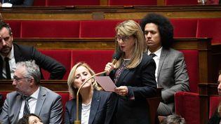 Patricia Mirallès, députée de l'Hérault, le 12 novembre 2019 à l'Assemblée nationale. (CHRISTOPHE MORIN / MAXPPP)