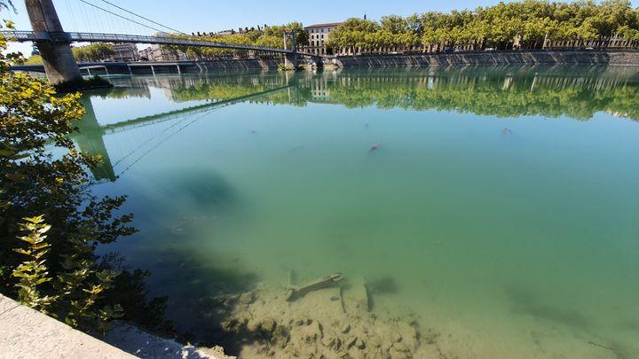 Un Lyonnais photographie, le 4 septembre 2019, une trottinette électrique au fond du Rhône. (ALERTEPOLLUTION)