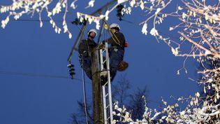 Des agents d'ERDF tentent de réparer une ligne, au village de Gernelle dans les Ardennes, le 20 décembre 2010. (ANGEL GARCIA / MAXPPP)