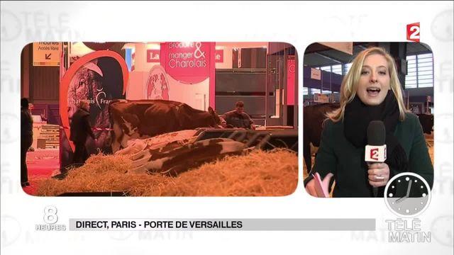 François Hollande sera présent à l'ouverture du Salon de l'Agriculture