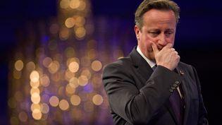 Le Premier ministre britannique David Cameron, à Londres, le 10 novembre 2014. (JUSTIN TALLIS / AFP)