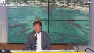Le ministre de la Transition écologique et solidaire Nicolas Hulot, invité de franceinfo le 21 juin 2018. (RADIO FRANCE / FRANCE INFO)