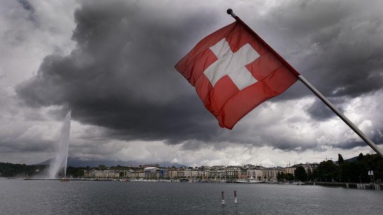 Sur les rives du Lac Léman, à Genève, le 14 juin 2013. (FABRICE COFFRINI / AFP)